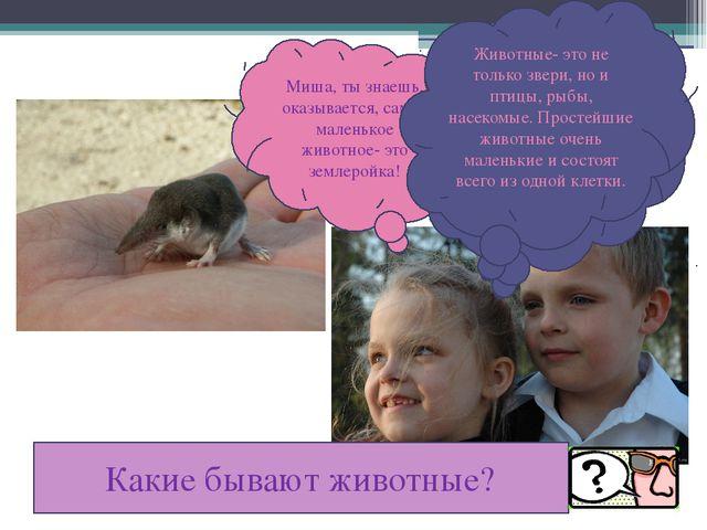 Миша, ты знаешь, оказывается, самое маленькое животное- это землеройка! Ты,...