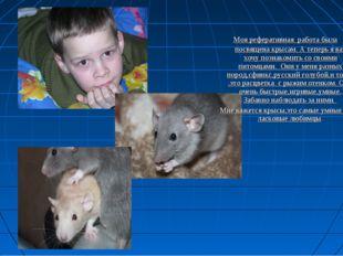 Моя реферативная работа была посвящена крысам. А теперь я вас хочу познакоми