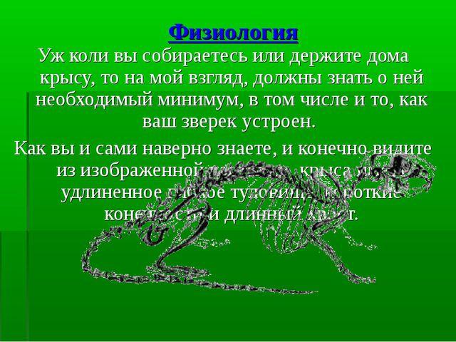 Физиология Уж коли вы собираетесь или держите дома крысу, то на мой взгляд, д...