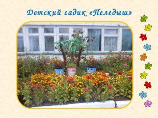 Детский садик «Пеледыш»