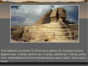 Тело Сфинкса составляет 72, 55 метров в длину и 20, 22 метра в высоту. Ширина