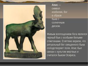 Апис — символ изобилия, бог в образе быка с солнечным диском. Живым воплощени