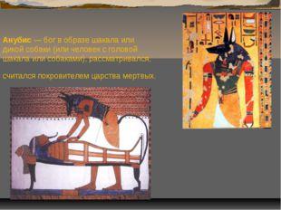 Анубис — бог в образе шакала или дикой собаки (или человек с головой шакала и