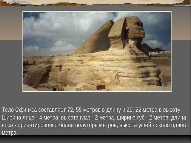 Тело Сфинкса составляет 72, 55 метров в длину и 20, 22 метра в высоту. Ширина...