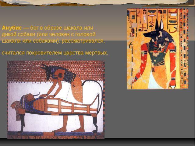 Анубис — бог в образе шакала или дикой собаки (или человек с головой шакала и...