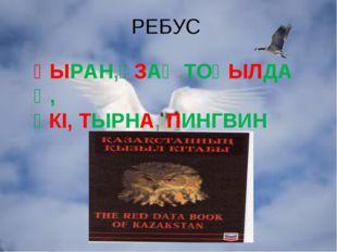 РЕБУС ҚЫРАН,ҰЗАҚ,ТОҚЫЛДАҚ, ҮКІ, ТЫРНА, ПИНГВИН