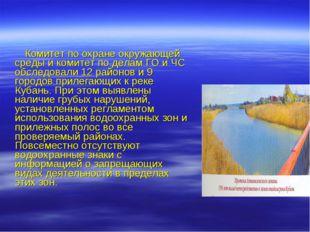 Комитет по охране окружающей среды и комитет по делам ГО и ЧС обследовали 12