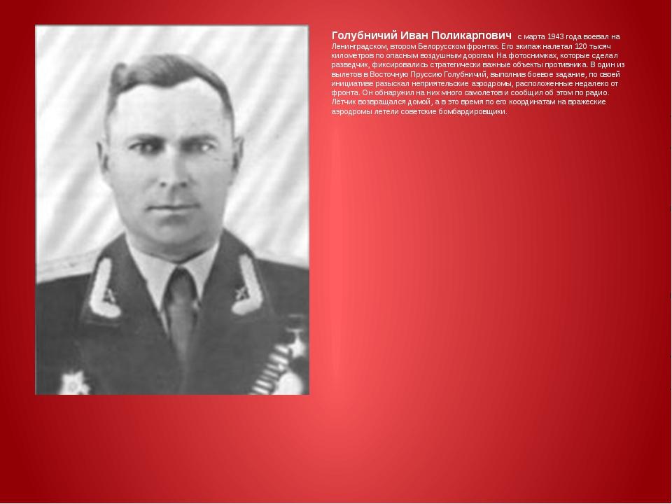 Голубничий Иван Поликарпович с марта 1943 года воевал на Ленинградском, втор...
