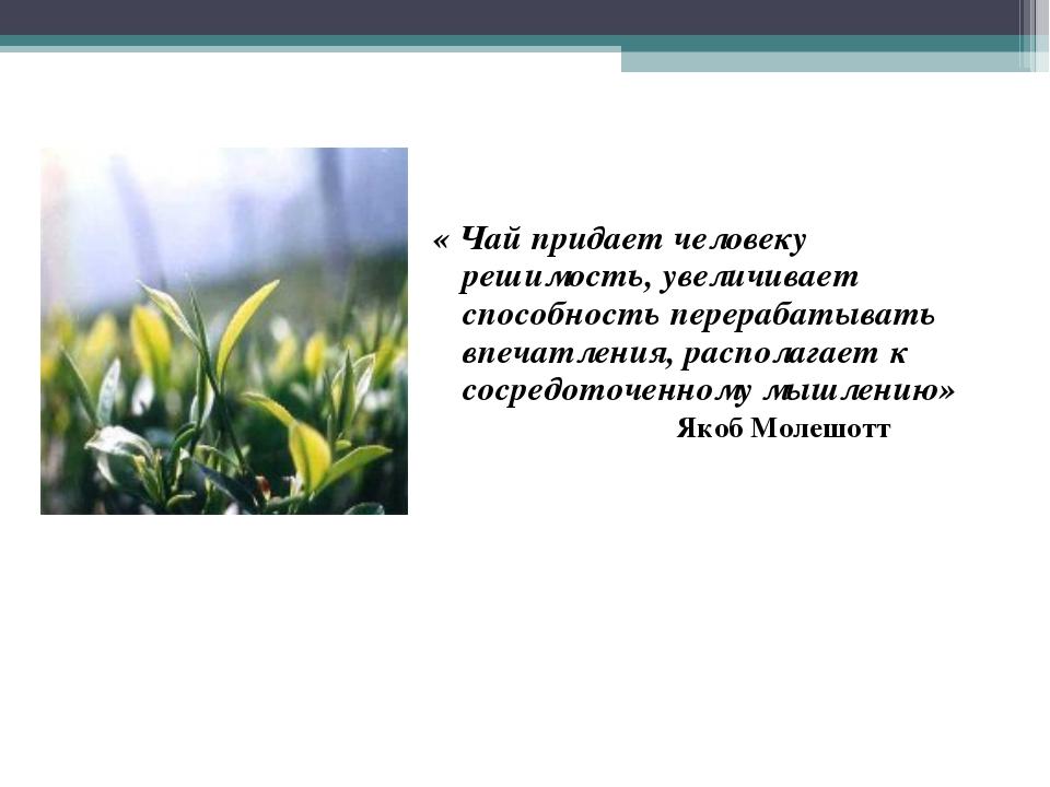 « Чай придает человеку решимость, увеличивает способность перерабатывать впеч...
