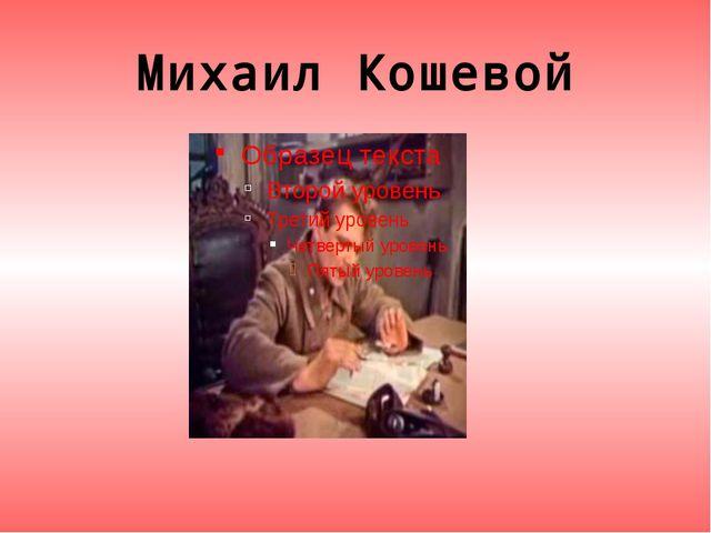 Михаил Кошевой