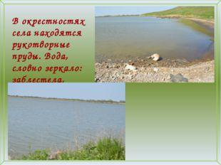 В окрестностях села находятся рукотворные пруды. Вода, словно зеркало: заблес