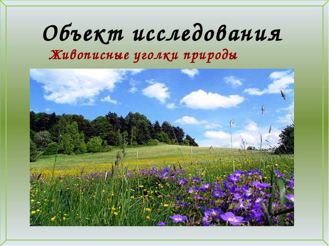 Объект исследования Живописные уголки природы нашего села.