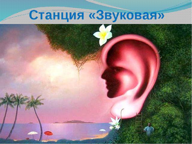 Станция «Звуковая»