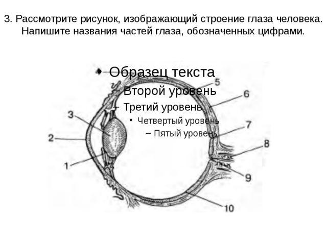 3. Рассмотрите рисунок, изображающий строение глаза человека. Напишите назван...