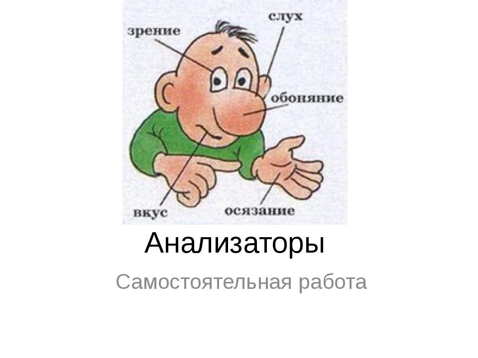 Анализаторы Самостоятельная работа