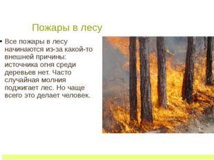 Пожары в лесу Все пожары в лесу начинаются из-за какой-то внешней причины: