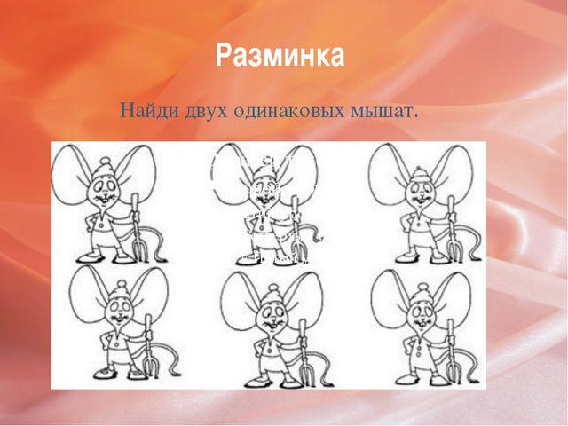 Разминка Найди двух одинаковых мышат.