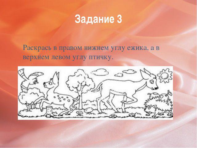 Задание 3 Раскрась в правом нижнем углу ежика, а в верхнем левом углу птичку.