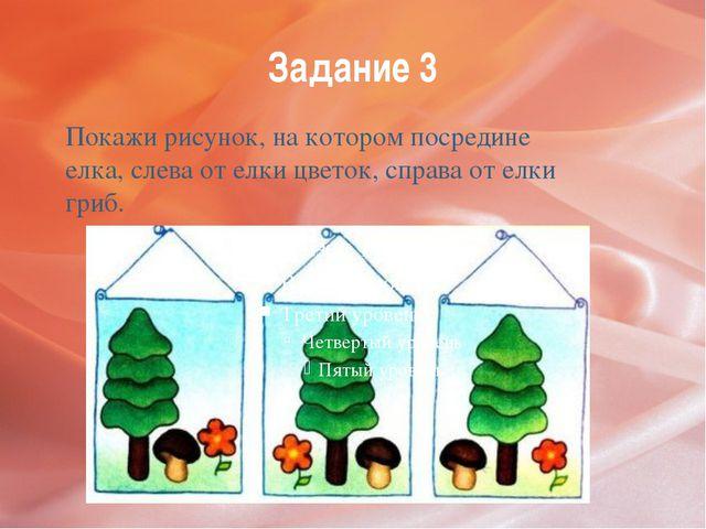 Задание 3 Покажи рисунок, на котором посредине елка, слева от елки цветок, сп...
