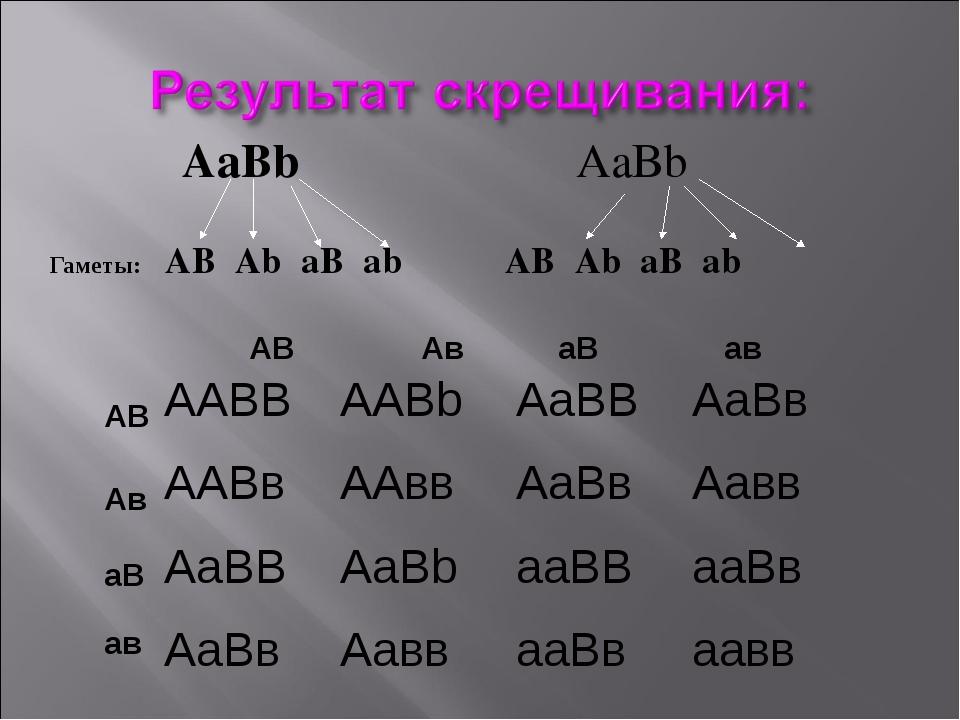 AaBb AaBb Гаметы: AB Ab aB ab AB Ab aB ab Aв AB aB aв AB Aв aB aв AABBAABb...