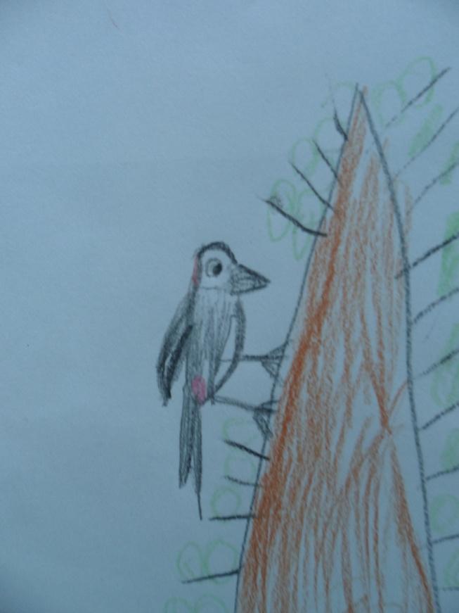 D:\2012-2013 уч.год Айголек\фото\фото детские рисунки\SAM_7062.JPG