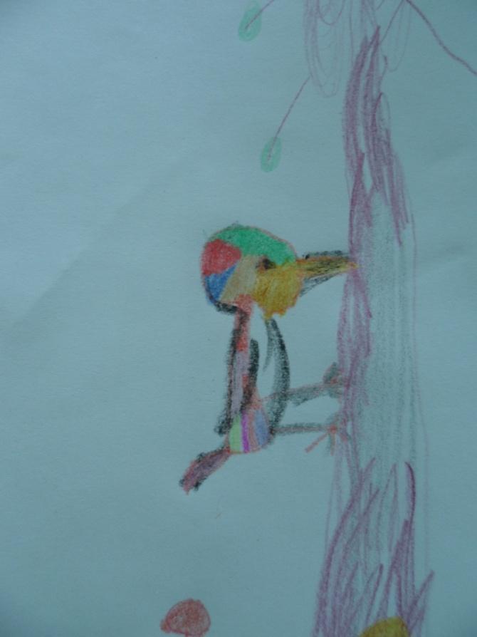 D:\2012-2013 уч.год Айголек\фото\фото детские рисунки\SAM_7057.JPG