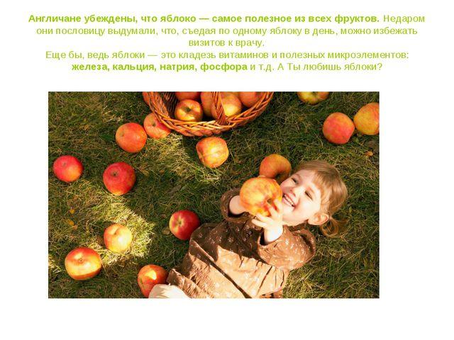 Англичане убеждены, что яблоко — самое полезное из всех фруктов. Недаром они...
