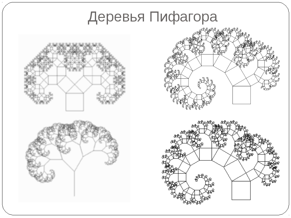 Деревья Пифагора