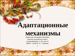 Адаптационные механизмы Некрасова Елизавета Юрьевна учитель английского языка