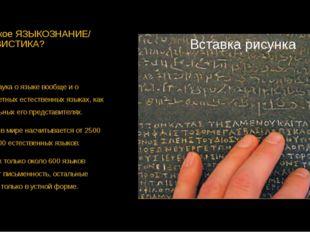 Что такое ЯЗЫКОЗНАНИЕ/ ЛИНГВИСТИКА? Это наука о языке вообще и о конкретных е