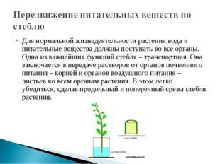 Для нормальной жизнедеятельности растения вода и питательные вещества должны