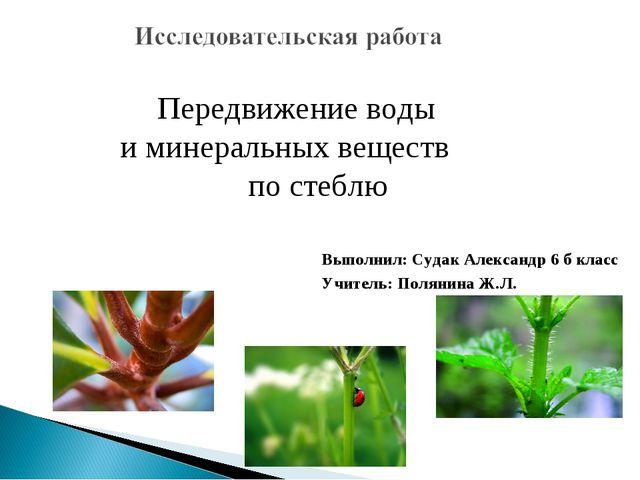 Передвижение воды и минеральных веществ по стеблю Выполнил: Судак Александр...