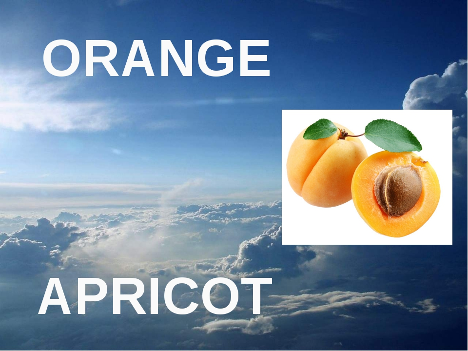 APRICOT ORANGE