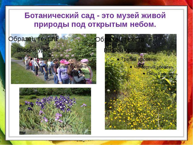 Ботанический сад - это музей живой природы под открытым небом.