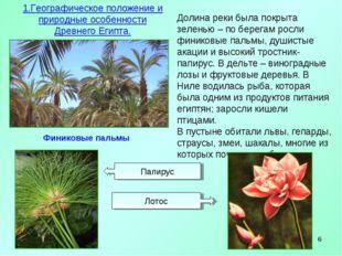 * Финиковые пальмы 1.Географическое положение и природные особенности Древнег