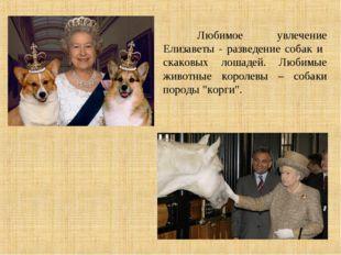 Любимое увлечение Елизаветы - разведение собак и скаковых лошадей. Любимые ж