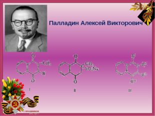 Палладин Алексей Викторович