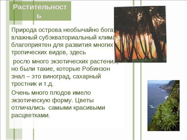 Растительность Природа острова необычайно богата, влажный субэкваториальный к...