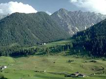 Альпийские луга в предгорь