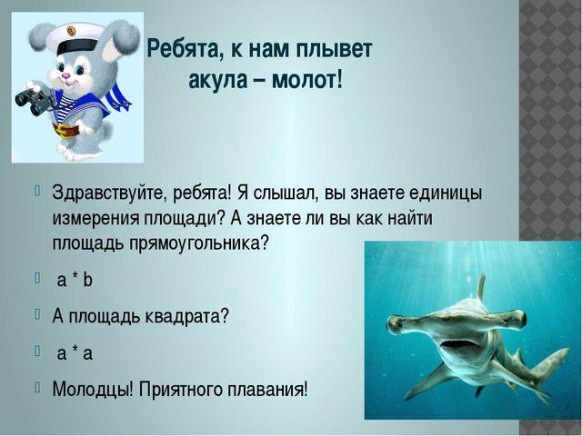 Ребята, к нам плывет акула – молот! Здравствуйте, ребята! Я слышал, вы знает...