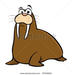 http://www.picturesof.net/_images_300/cute_cartoon_walrus_on_a_white_background_in_a_vector_clip_art_illustration_120822-204832-006001.jpg