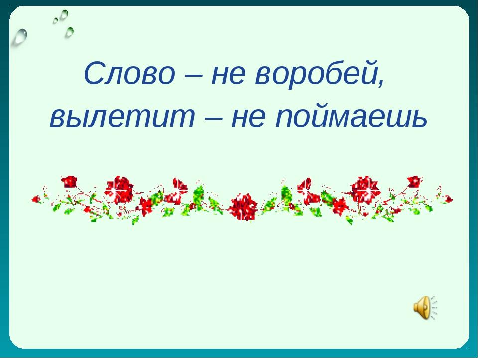 Слово – не воробей, вылетит – не поймаешь
