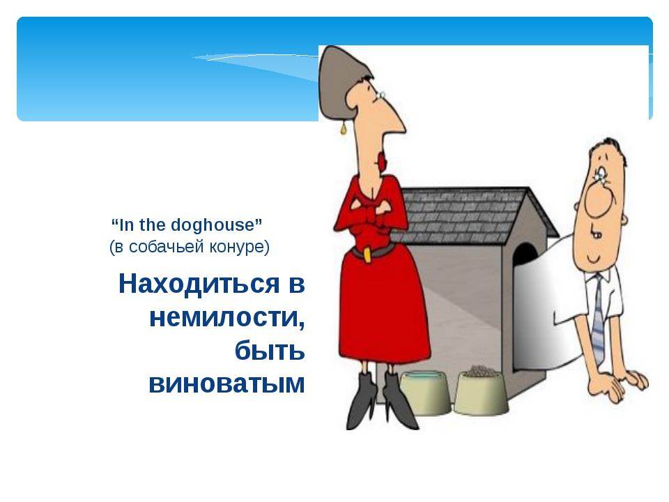 """Находиться в немилости, быть виноватым """"In the doghouse"""" (в собачьей конуре)"""