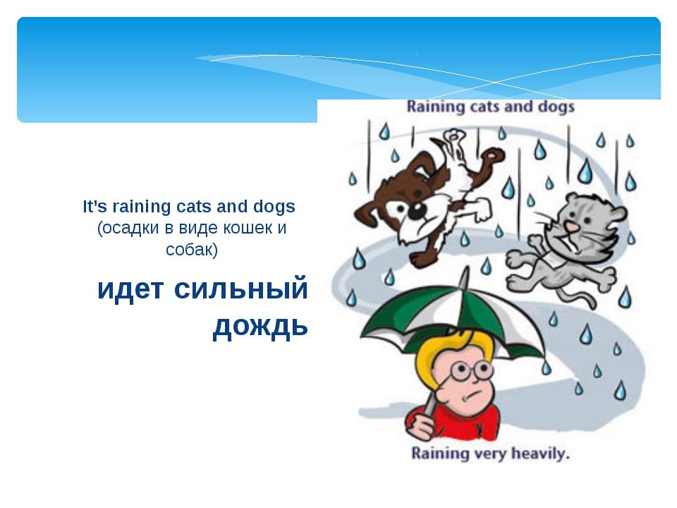 идет сильный дождь It's raining cats and dogs (осадки в виде кошек и собак)