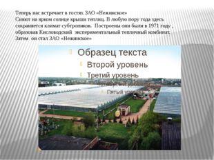 Теперь нас встречает в гостях ЗАО «Нежинское» Сияют на ярком солнце крыши теп