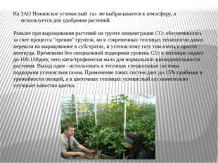 На ЗАО Нежинское углекислый газ не выбрасывается в атмосферу, а используется