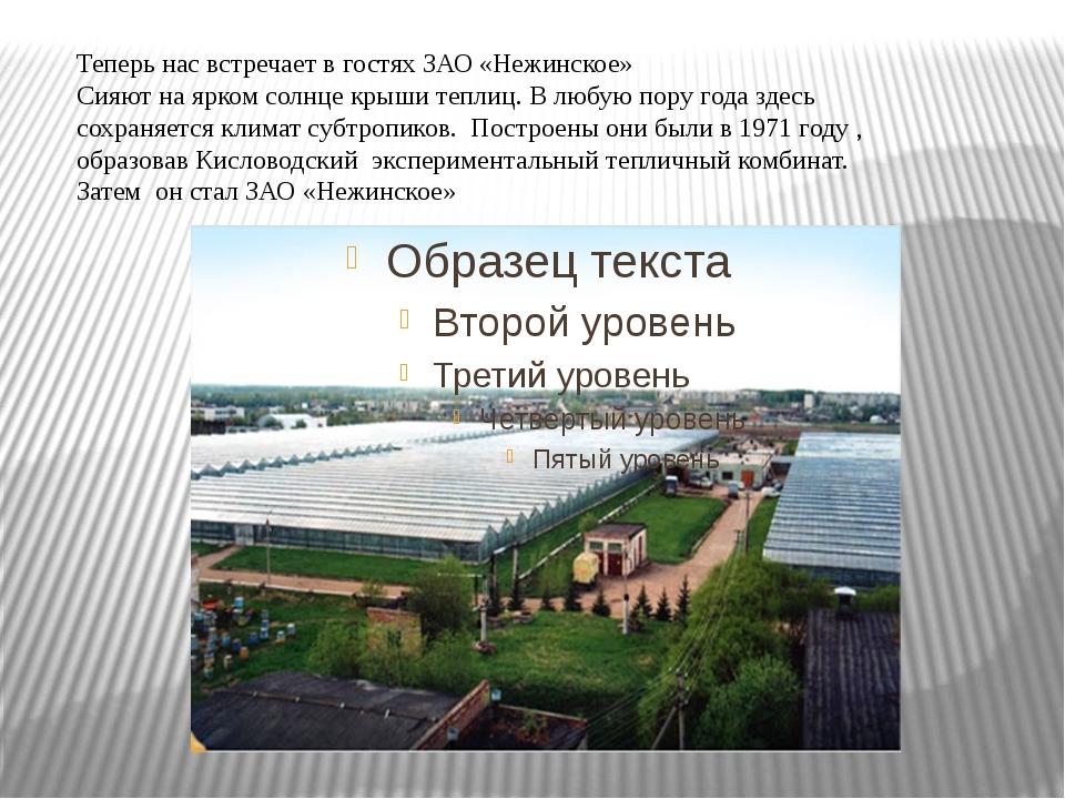 Теперь нас встречает в гостях ЗАО «Нежинское» Сияют на ярком солнце крыши теп...