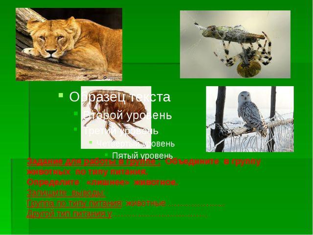 Задание для работы в группе : Объедините в группу животных по типу питания....