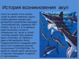 История возникновения акул Никто не сможет точно сказать ,когда на земле появ
