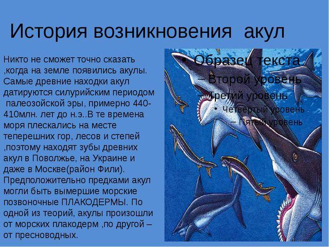История возникновения акул Никто не сможет точно сказать ,когда на земле появ...
